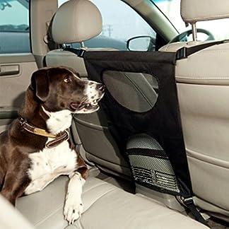 valla barrera protectora coche perros