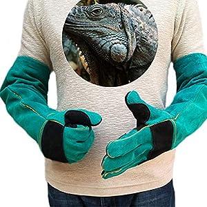 Manches longues gants de protection pour animaux Gants de manipulation des animaux Morsure de cuir pour chien, chat, éraflure, manipulation des oiseaux Gants de faucon Grabbing Reptile Squirrel Morsur
