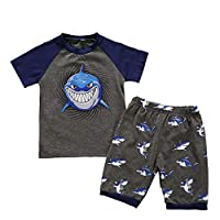 Baby Boys Girls Cartoon Clothes Set MS-SM Toddler Kids Long Sleeve Shark Cartoon Animal Tops+Shorts Pajamas Sleepwear Outfits 2Pcs For 18M-7Y (Gray, 2-3 Years)