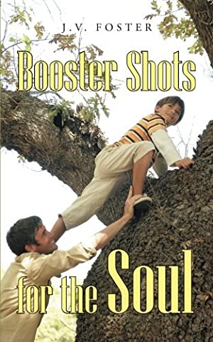 Booster Shots for the Soul by J. V. Foster (2013-12-12)