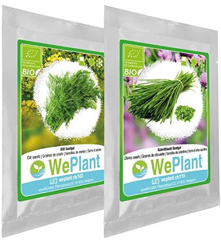 BIO Dill & Schnittlauch Pflanzen-Samen Set - indoor/outdoor