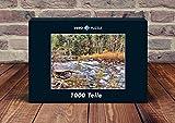 VERO PUZZLE 56505 Località Yosemite, 1000 parti in alta qualità, cellophaned scatola di puzzlen