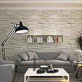 HANMERO®Modern Vliestapete chinesische Art steinoptik Prägung Mustertapete 0.53m*10m hell grau für Fernsehhintergrund, Wohnzimmer, Schlafzimmer