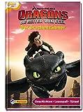 Dreamworks Dragons: Der Drachenzähmer: Geschichten - Lesespaß - Rätsel