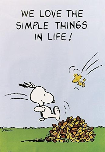 Peanuts Poster We Love The Simple Things In Life! (61cm x 91cm) + Ü-Poster