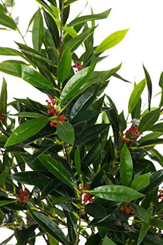 Sarah B XXL Olivenbaum in Blüte Baum JWS2060-2 Großer künstlicher Olivenbaum 120 cm hoch, mit Blüten,Kunstpflanze, Kunstblume, Kunstbaum, Zimmerpflanze künstlich