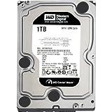 'Western Digital HDD RE 1TB Festplatte