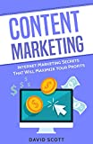 Content Marketing: Internet Marketing Secrets That Will Maximize Your Profits