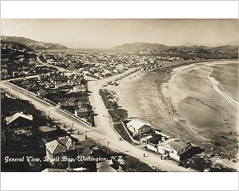 Photographic Print of New Zealand - Lyall Bay, Wellington