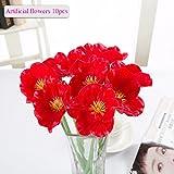 Fleurs Artificielles, Meiwo 10 Pcs Real Touch Latex Artificials Coquelicots Flowers dans Les Vases Pour Les Bouquets de Mariage / Décoration Intérieure / Party / Graves Arrangement(Rouge)