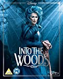 Into The Woods BD [Blu-ray] [Region Free]