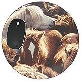 Grupo de ponis islandeses Mousepad - neopreno para ópticas y ratón láser, marrón, Round Mousepad