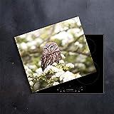DAMU   Ceranfeldabdeckung 1 Teilig 60x52 cm Herdabdeckplatten Blumen weiß Natur Elektroherd Induktion Herdschutz Spritzschutz Glasplatte Schneidebrett