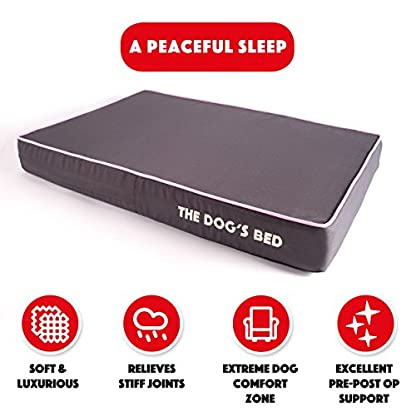 The Dog's Bed, Premium Orthopedic Waterproof Memory Foam Dog Beds, 5 Sizes/7 Colours: Eases Pet Arthritis, Hip Dysplasia… 3