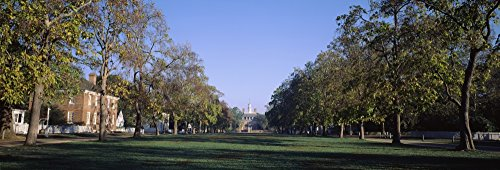 The Poster Corp Panoramic Images - Trees in a Garden of a Palace Governor's Palace Williamsburg Virginia USA Kunstdruck (30,48 x 91,44 cm)