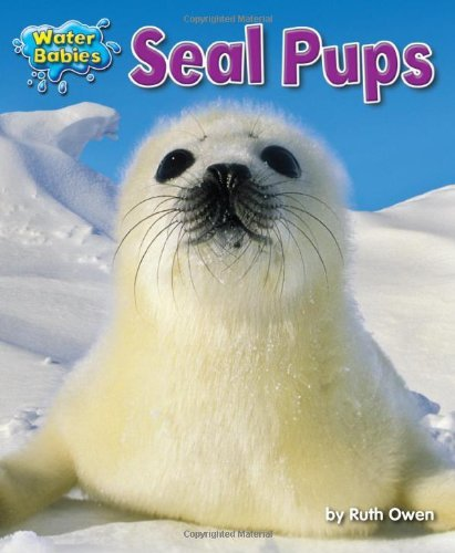 seal-pups-water-babies-by-ruth-owen-2012-08-02