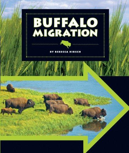 Buffalo Migration (Animal Migrations)
