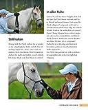 Bodenarbeit mit Pferden: Abwechslungsreiche Übungen, die Spaß machen - 6