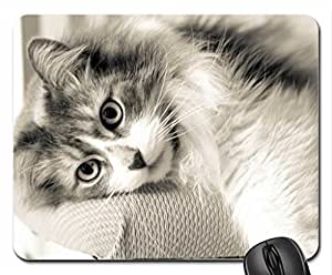 Sleeping beauty :) Mouse Pad, Mousepad (Cats Mouse Pad)