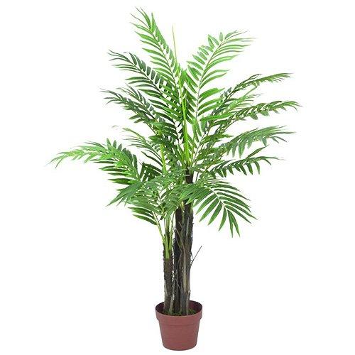 Euro Palms 82510717 Phönixpalme, 120 cm