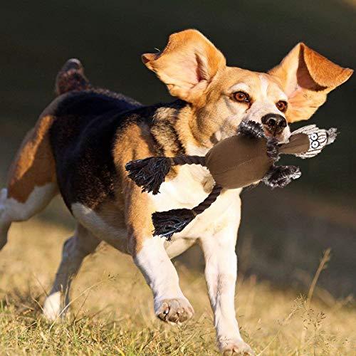 KOBWA Hund Spielzeug, Hund Kauen Spielzeug Kuscheltiere Jagd Spielzeug mit Klassischen Stockente Strauß Stil Plüsch Squeaky Hund Spielzeug Welpen Kauen Spielzeug für Kleine Mittelhunde -