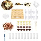 Janolia Cup Allevamento, Completo Ape Regina Allevamento Cup Kit System, Bee Apicoltura Bee Keeper Tools box set, 110 Monouso Coppe Cellulari Strumento Set