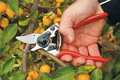 Felco Obstbau Und Gartenschere Nr 6 - 7