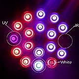XJLED LED wachsen Licht 18W E27 AC85-265V Das ganze Spektrum