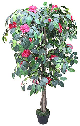 Decovego Kamelie Künstliche Pflanze Kunstpflanze mit Blüten Echtholz Rot 135cm