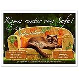 personalisierte Einladungen für Geburtstag bestandene Prüfung Silvester - eigener Text Katze auf Sofa, 90 Karten - 21 x 14,8 cm DIN A5