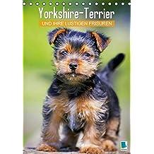 Suchergebnis Auf Amazon De Fur Yorkshire Terrier Ahnlich A5