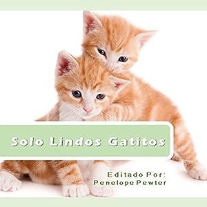 Solo Lindos Gatitos: Fotos y Citas Sobre Gatos Para Los Amantes Del Gato