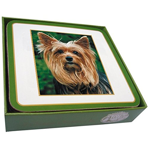 Yorkshire Terrier, Yorkie Dog regalo, qualità (Yorkshire Terrier Coaster)