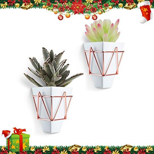 [Blumentopf] Love-KANKEI® Wand Pflanztopf Hängendes Pflanzgefäß Vasen aus Porzellan mit Drahthalter, weiß, 2er Set (Ideales Weihnachtsgeschenk)