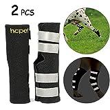 Hcpet Dog Hock Brace per Cani, Gomito del Cane ferite Protector con Cinghie di Sicurezza Riflettenti per la Protezione da lesioni e distorsioni (M)