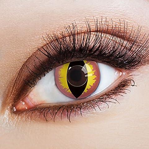 aricona Farblinsen – Katzenaugen deckend rose – farbige Kontaktlinsen ohne Stärke – bunte, farbig intensive gelb rosane Farbkontaktlinsen für Halloween & (Cats Musical Halloween Kostüme)