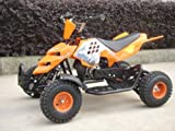 Mini ATV Easy Pullstart Quad Pocketquad Kinderquad Kinderfahrzeug Repti (Orange)