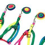 - Saite Einstellbarer Zugkraft Nylon für Haustiere aus Nylon für Hunde, Gurt Klimmzugstange für Hunde Hunde Regenbogen–120cm