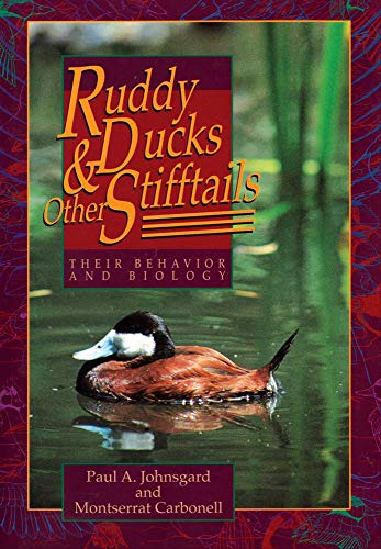Ruddy Ducks and Other Stifftails: Their Behavior and Biology (Animal Natural History, Band 1)