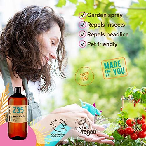 Zoom IMG-1 naissance olio di neem vergine