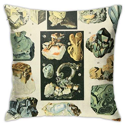 Jacklee Vintage Minerals Chart Kissenbezug 18x18 Cotton Throw Pillow Covers 45cm x 45cm