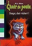 chair de poule tome 45 danger chat m?chant