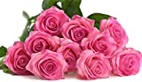 FiveSeasonStuff® 10 Stems of Real Touch Silk 'Petals Feel and Look like Fresh Roses' Artificial Flower Bouquet Floral Arrangement, Perfect for Wedding, Bridal, Party, Home, Office Décor DIY (Graceful Pink #15) - FiveSeasonStuff - amazon.co.uk