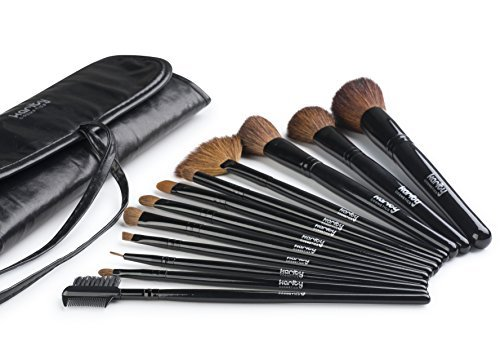 Karity Cosmetics Studio 12-Piece Natural Hair Makeup Brush Set With Pouch - Jet Black by Karity Cosmetics