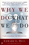 Why do We do what We do: Understanding Self Motivation
