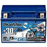 BlueMax YTX7A-BS Motorradbatterie GEL 12V 7,5Ah CTX7A-BS Starterbatterie 50615 Erstausrüsterqualität