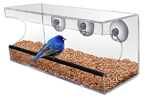 crystal-clear-bird-feeder-suction-window-feeders-birds-cats-and-kids-love-easy-to-clean-and-fill-see