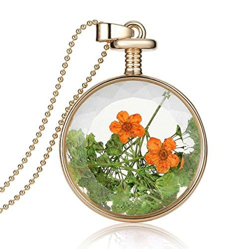 femmes-charme-lily-sechees-fleur-specimen-pendentif-dangle-longue-chaine-dor-instruction-collier