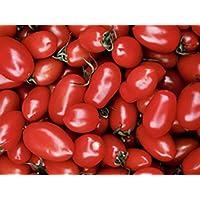suchergebnis auf f r roma tomate blumen pflanzen garten. Black Bedroom Furniture Sets. Home Design Ideas