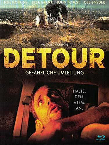 Detour - Gefährliche Umleitung (William Dickerson)
